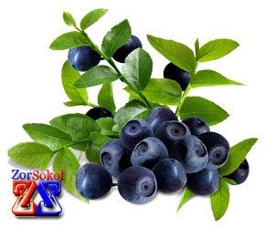 Черника - кладезь витаминов