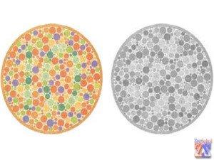 Слева - норма, справа - монохроматия