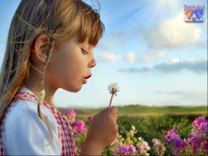 Пыльца растений - известный аллерген