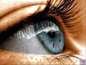Показания к применению Траватана: открытоугольная глаукома и офтальмотонус