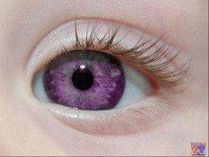 Фиолетовые глаза - очень большая редкость